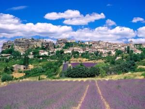 hills of saignon, france